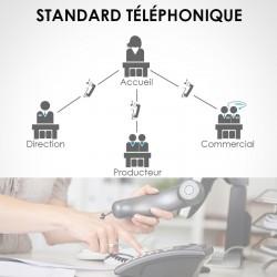 Répondeur et standard téléphonique