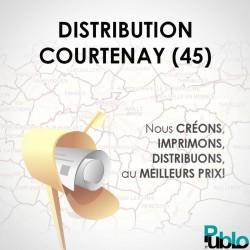Distributions 10000 boites canton Courtenay