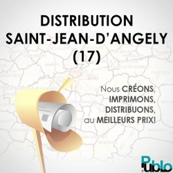 SAINT JEAN D'ANGELY 17 Distribution 49910 boites