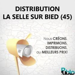 La Selle sur Bied - Distribution boite aux lettres